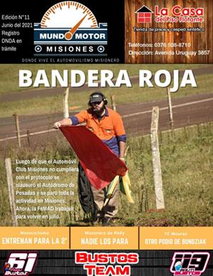 Revista N° 11 mes junio